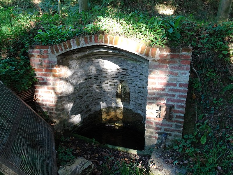 Fontaine Saint-Sabulin, à La Dutière, sur la commune de Peillac.