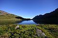 Oberhüttensee 26361 2016-06-23.JPG