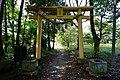 Obusuma-jinja Torii1.JPG