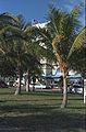 Ocean Drive-South Beach(js)01.jpg