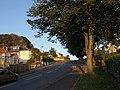 Old Woods Hill, Torquay - geograph.org.uk - 986618.jpg
