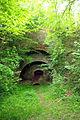 Old limekiln, Duncton Hill - geograph.org.uk - 448977.jpg