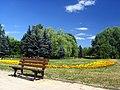 Olsztyn - Kusociński's Park - panoramio - Andrzej Pobiedziński.jpg