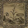 Ori Apollinis Niliaci, De sacris Aegyptiorum notis, Aegyptiacè expressis - libri duo, iconibus illustrati, and aucti - nunc primùm in latinum ac gallicum sermonem conversi (1574) (14559267950).jpg
