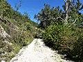 Orliaguet chemin carrière sud.jpg