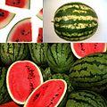 Owoce Arbuz.jpg