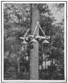 PSM V88 D060 Novel idea for street lighting 1916.png