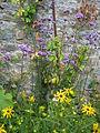 Parc Floral de Haute-Bretagne3.jpg