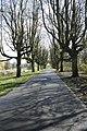 Park oosterhout Alkmaar.jpg