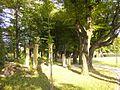 Park palac Kotulinskich Cz Dz1.jpg