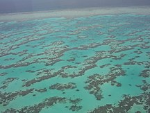 Queensland-Turismo-Part of Great Barrier Reef from Helicopter