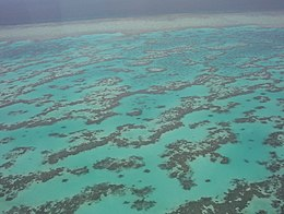Part of Great Barrier Reef from Helicopter.jpg