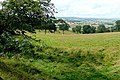 Pasture off Physic Lane - geograph.org.uk - 1513457.jpg