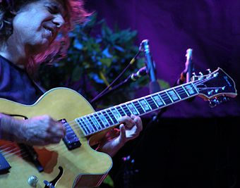 Five-time award recipient Pat Metheny performing in 2008 Pat Metheny and his guitar.jpg