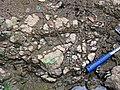 Pedogenic breccia (Conemaugh Group, Upper Pennsylvanian; creek cut on the western side of Caldwell, Ohio, USA) 23.jpg