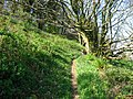 Pembrokeshire Coastal Path - geograph.org.uk - 1263046.jpg