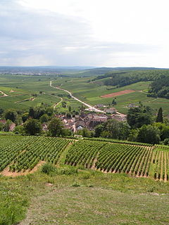 Pernand-Vergelesses Commune in Bourgogne-Franche-Comté, France