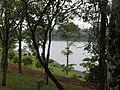 Petrópolis, Londrina - PR, Brazil - panoramio.jpg