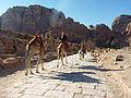 Petra - Rent-a-camel (9779004841).jpg