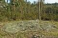 Petroglifos de Monte Cornide - Luou (A Corunha).jpg