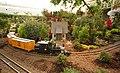 Phipps Conservatory 18.jpg