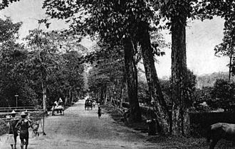 Orchard Road - Orchard Road, c. 1900