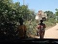 Picada da Praia de Ofir, Bolama, Guiné-Bissau – 2018-03-03 – DSCN1262.jpg