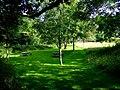 Picnic area at Sychpant - geograph.org.uk - 1434712.jpg