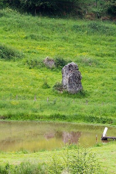 Français:  Menhir dit «Pierre de l'Horloge» à Saint-Saturnin-du-Limet (France).