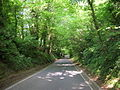 Pope's Wood, Road from A48 to Upton St Leonards - geograph.org.uk - 1136267.jpg
