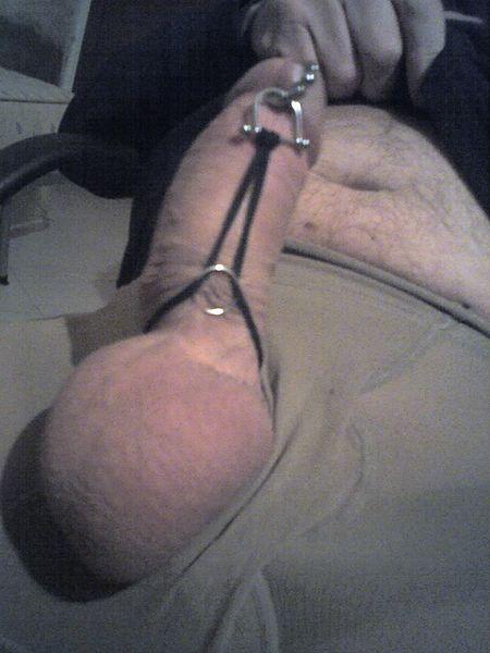 File:Prince Albert piercing e Hafada piercing (a).jpg