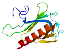 Protein SPRED2 PDB 2jp2.png