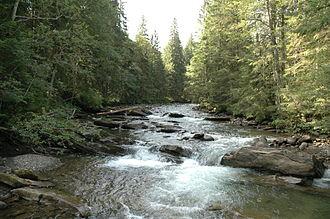 Prut - Prut River near Hoverla, Ivano-Frankivsk Oblast