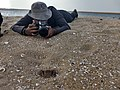 Pulicat Lake IMG 20180616 165543053 HDR.jpg