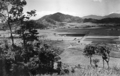 Queensland State Archives 1226 Jungara Cane Fields from Cairns Railway c 1935.png