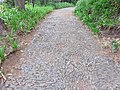 Quinta do Monte, Funchal, Madeira - IMG 6397.jpg