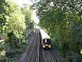 Railway alongside Ladywell Fields - geograph.org.uk - 231841.jpg