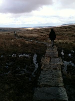 The Ramblers - A paved path in the Peak District, near Marsden, West Yorkshire, constructed by the Ramblers