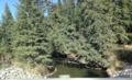 Raven River, Alberta.png