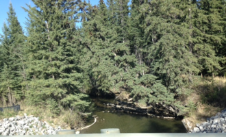 Raven River - Taken from a bridge soon before the North Raven River flows into the river. Much of the river is located in a heavily forested valley