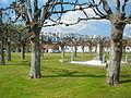 Raye-sur-Authie - Place et monument aux morts.JPG