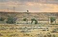 Red Canyon Road South Dakota (28169693683).jpg
