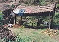 Reed's cottage with some clothes on the roof the Gambia.jpg
