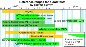 Reference Ranges For Blood Tests By Enzyme Activity Png