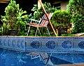 Reflexo - HDR - piscina (2741622415).jpg