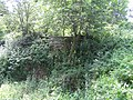 Remains of Nether Wheel, Woodhouse - geograph.org.uk - 194511.jpg
