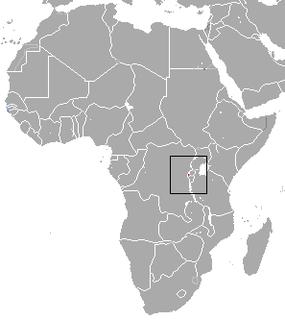 <i>Rhinolophus hilli</i> species of mammal