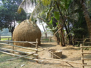 Chokapara - A traditional way to shelf the rice straw in chokapara