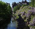Risle canal Pont-Audemer 03.jpg
