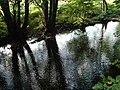 River Bovey at Wilford Bridge - geograph.org.uk - 256542.jpg